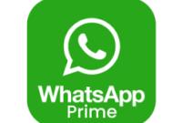 Download WhatsApp Prime Apk Mod Terbaru 2021 Dan Linknya